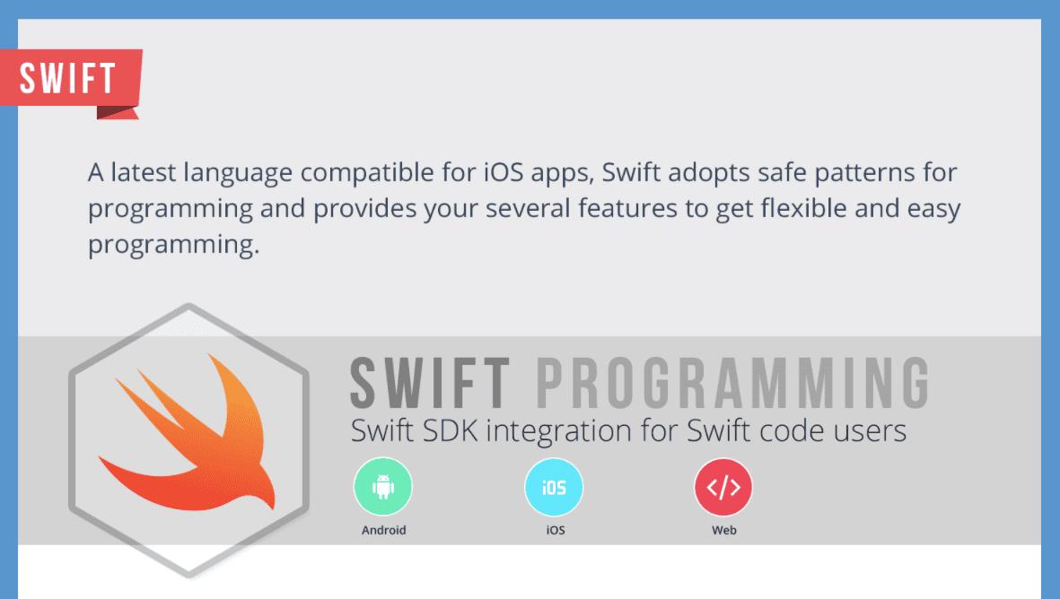 Best Programming Languages for App Development Infographic 1