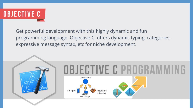 Best Programming Languages for App Development Infographic 3